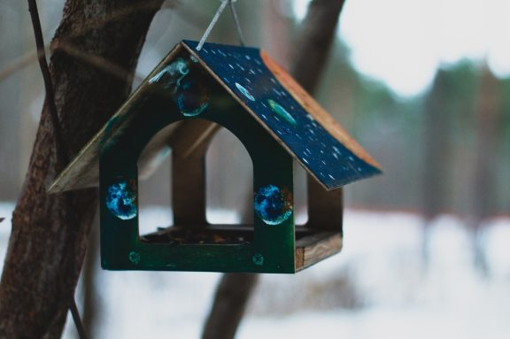 bird-feeder-bird-house-blurred-background-1727247