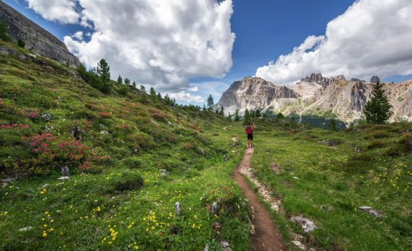 adventure-alps-backpack-554609