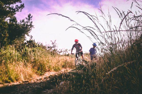 bicycle-bikers-biking-733741